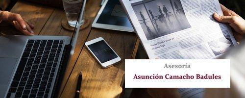 Asesoría Asunción Camacho Badules